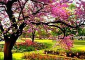 Puzzle vive le printemps