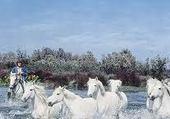 Jeu puzzle chevaux sur l'eau