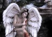 Puzzle en ligne l'ange blessé