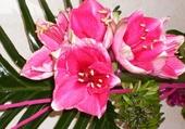 Puzzles Bouquet