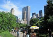 Jeux de puzzle : Central Park NY