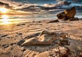 Jeux de puzzle : plage et soleil