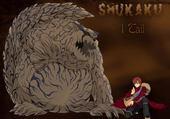 Puzzles Shukaku Naruto Shippuden