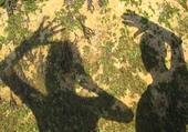 Puzzle Puzzle ombres