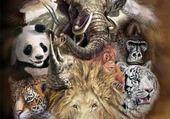Puzzle gratuit mix d'animaux