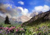 Puzzle PYRENEES @