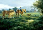 Puzzle en ligne promenade a cheval