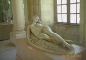 Puzzle Musée Calvet Avignon