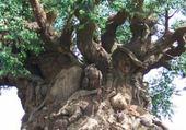 Puzzle drôle d'arbre