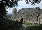 Puzzle Puzzle gratuit Chateau d'Allègre (30)