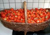 Jeux de puzzle : fraises