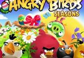Puzzle Puzzles angry birds