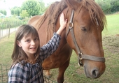 Puzzle en ligne cheval