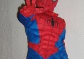 Puzzle gratuit Spideraphy
