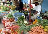 Puzzle en ligne marché légumes