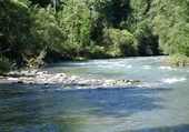 Puzzle riviere