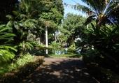 Puzzle en ligne Jardin botanique à Tenerife