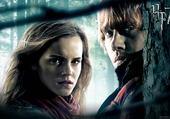 Puzzle Ron et Hermione