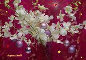 Puzzles fleurs