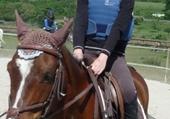 Puzzles moi a cheval