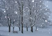 Puzzle Puzzle hiver