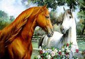 Puzzles Les chevaux