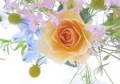 Puzzles coeur de fleur