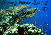 Puzzles Bonne Année 2012