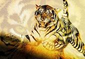 Puzzle Puzzle tigre