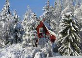 Jeux de puzzle : hiver