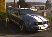 Puzzle mustang