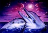 Puzzle Puzzle dauphin et bebe dauphin