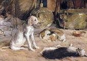 Puzzle chiens et chat -julian alden Weir