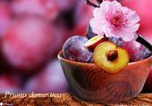 fleur et fruits