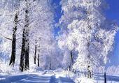 Puzzles neige