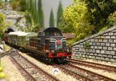 Puzzle Train
