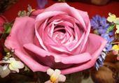 Puzzle Puzzle rose