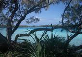 Puzzle gratuit îlot et lagon