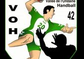Puzzle aassoc Firminy VO Handball