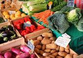 Puzzle en ligne legumes