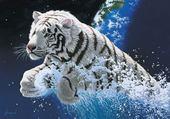 Jeu puzzle tigre blanc