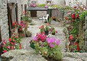 Puzzle fleurs