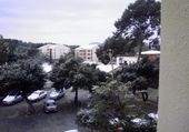 neige a pin rolland
