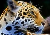 Puzzle Puzzle gratuit tigre