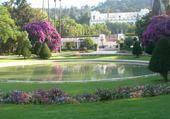 Puzzle gratuit jardin d'Alger