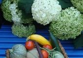 Puzzle gratuit légumes du jardin