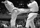 Jeux de puzzle : jujitsu