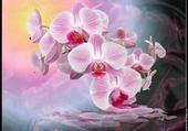 Jeu puzzle orchidée