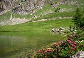 Jeux de puzzle : lac du Lauzet