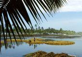 Puzzle Kerala- Inde